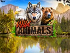 Wild Animals logo