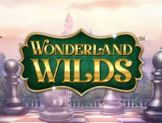 Wonderland Wilds logo
