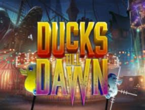Ducks Till Dawn