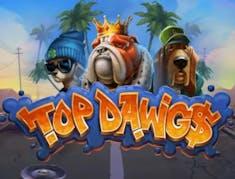 Top Dawgs logo